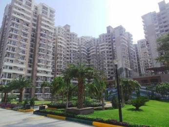 2550 sqft, 4 bhk Apartment in JM Aroma Sector 75, Noida at Rs. 1.4000 Cr
