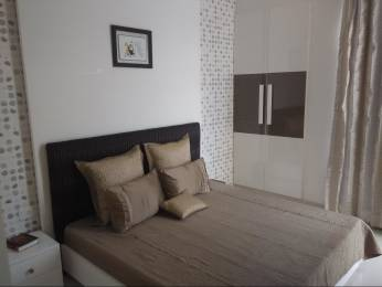 1850 sqft, 3 bhk Apartment in JM Aroma Sector 75, Noida at Rs. 1.0000 Cr