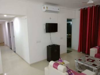 950 sqft, 2 bhk IndependentHouse in Builder Project Sector 55 Noida, Noida at Rs. 15000