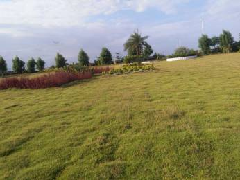 1647 sqft, Plot in Builder Great Investment In Ap New Capital Port Area, Visakhapatnam at Rs. 22.8732 Lacs