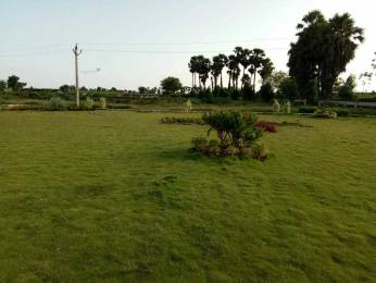 1503 sqft, Plot in Builder Andhra Pradesh New Capital AMARAVATI Ameerpet, Hyderabad at Rs. 20.0383 Lacs