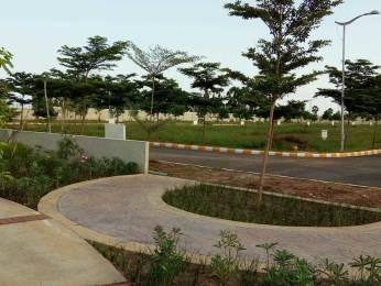 1503 sqft, Plot in Builder Project In Andhra Pradesh New Capital AMARAVATI Hitech City, Hyderabad at Rs. 20.0383 Lacs