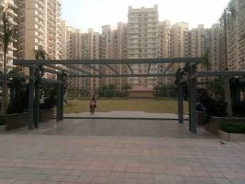 1080 sqft, 2 bhk Apartment in Nirala Estate Techzone 4, Greater Noida at Rs. 8000
