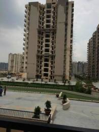 1070 sqft, 2 bhk Apartment in Builder Gaur city 2 10th avenue Noida Extension, Greater Noida at Rs. 8000