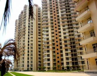 1464 sqft, 3 bhk Apartment in Builder Supertech Eco Village Greater Noida West, Greater Noida at Rs. 11000