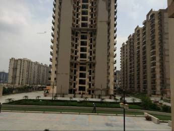 1050 sqft, 2 bhk Apartment in Builder Gaur city 2 10th avenue Sector 4 Noida Extension, Greater Noida at Rs. 8500