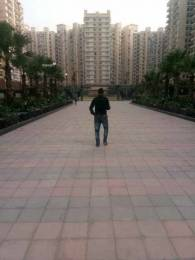 1080 sqft, 2 bhk Apartment in Builder Nirala India Group Estate Noida Extension, Greater Noida at Rs. 8500
