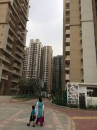 1080 sqft, 2 bhk Apartment in Builder Mahagun Group Mywoods Phase 1 Greater Noida West, Greater Noida at Rs. 9000