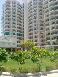 737 Sqft 1 Bhk Apartment In Upasna Rosewood Apartments Panchyawala Jaipur At Rs