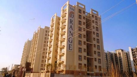 1100 sqft, 2 bhk Apartment in Tulip Orange Sector 70, Gurgaon at Rs. 70.0000 Lacs