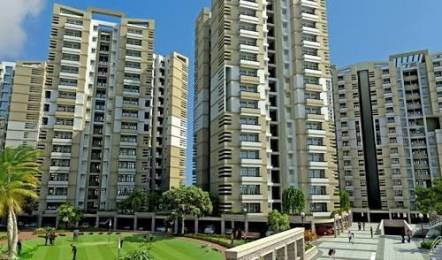1450 sqft, 3 bhk Apartment in SRS Royal Hills Sector 87, Faridabad at Rs. 13000