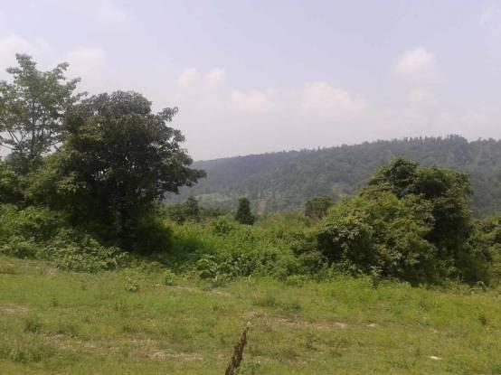 1053 sqft, Plot in Builder Project Sahastradhara Road, Dehradun at Rs. 19.6500 Lacs
