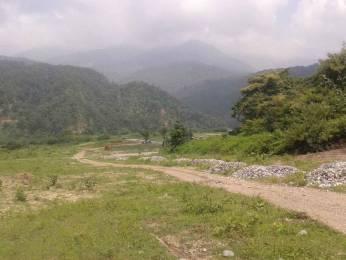 1647 sqft, Plot in Builder Project Sahastradhara Road, Dehradun at Rs. 37.0000 Lacs