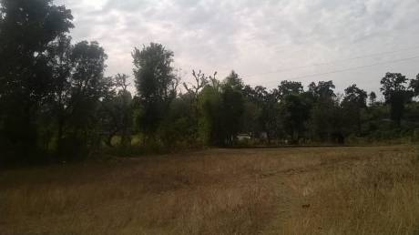 14400 sqft, Plot in Builder Project Sahastradhara Road, Dehradun at Rs. 4.8000 Cr
