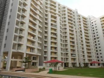 561 sqft, 1 bhk Apartment in Unique My Haveli Ajmer Road, Jaipur at Rs. 9000