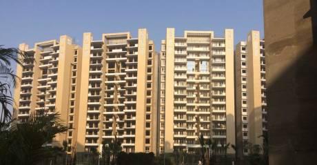 1578 sqft, 3 bhk Apartment in Tulip Violet Sector 69, Gurgaon at Rs. 1.0000 Cr