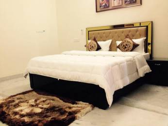 2500 sqft, 3 bhk Villa in SS Aaron Ville Sector 48, Gurgaon at Rs. 55000