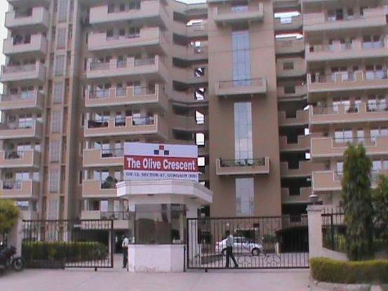 2200 sqft, 3 bhk Apartment in Forte Olive Crescent Sector 47, Gurgaon at Rs. 34000