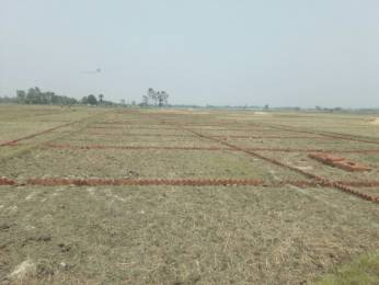 1000 sqft, Plot in Builder tashi Aurangabad Patna Road, Patna at Rs. 6.5100 Lacs
