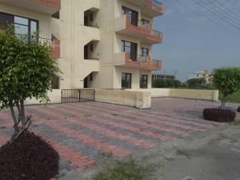 1300 sqft, 3 bhk BuilderFloor in Builder Project Taraori, Karnal at Rs. 20.9500 Lacs