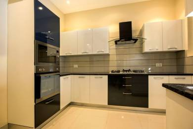 1148 sqft, 2 bhk Apartment in Motia Royale Estate Dashmesh Nagar, Zirakpur at Rs. 12500