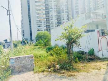 431 sqft, Plot in Builder Project Sector 121, Noida at Rs. 24.0000 Lacs