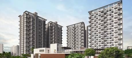 2364 sqft, 4 bhk Apartment in Bhandari 7 Plumeria Drive Tathawade, Pune at Rs. 1.4381 Cr
