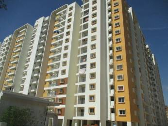 1570 sqft, 3 bhk Apartment in MJR Pearl Kadugodi, Bangalore at Rs. 96.0000 Lacs