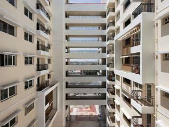 1076 sqft, 2 bhk Apartment in MJR Platina Begur, Bangalore at Rs. 70.0000 Lacs