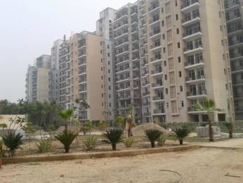 1450 sqft, 3 bhk Apartment in Omaxe New Heights Sector 78, Faridabad at Rs. 51.0000 Lacs