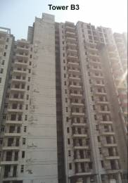 1602 sqft, 3 bhk Apartment in KLJ Greens Sector 77, Faridabad at Rs. 45.0000 Lacs