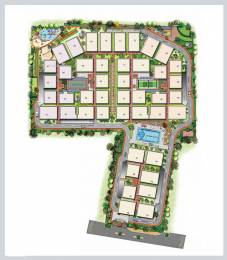 1695 sqft, 3 bhk Apartment in Sraddha White Cliff Sai Baba Ashram, Bangalore at Rs. 72.0000 Lacs