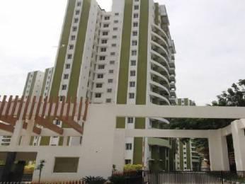 1690 sqft, 3 bhk Apartment in Purva Skywood Harlur, Bangalore at Rs. 33000