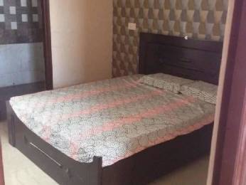 775 sqft, 1 bhk Apartment in Bajwa Sunny Enclave Sector 124 Mohali, Mohali at Rs. 10.0000 Lacs