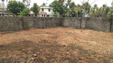 2500 sqft, Plot in Builder Project Eroor Road, Kochi at Rs. 6.5000 Lacs