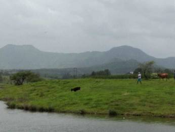 2700 sqft, Plot in Bhoomi Estates By The Lake Shirwal, Pune at Rs. 17.0000 Lacs
