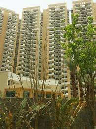 1650 sqft, 3 bhk Apartment in Gaursons India and Saviour Builders Gaur City 6th Avenue Sector-4 Gr Noida, Greater Noida at Rs. 52.0000 Lacs