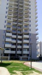 1400 sqft, 2 bhk Apartment in Godrej Summit Sector 104, Gurgaon at Rs. 13500