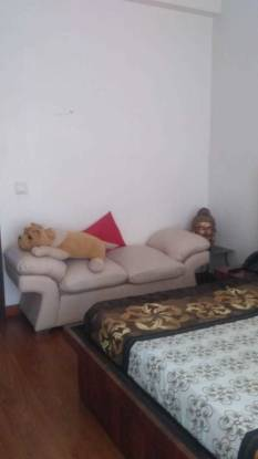 1300 sqft, 1 bhk Apartment in Central Park The Room Sector 48, Gurgaon at Rs. 60000