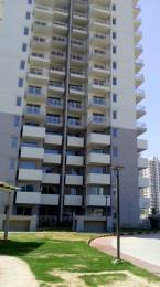 1446 sqft, 2 bhk Apartment in Godrej Summit Sector 104, Gurgaon at Rs. 75.0000 Lacs