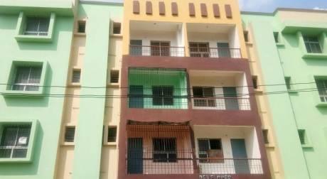1053 sqft, 2 bhk Apartment in Builder Safiya Enclave Phulwari sharif, Patna at Rs. 45.0000 Lacs