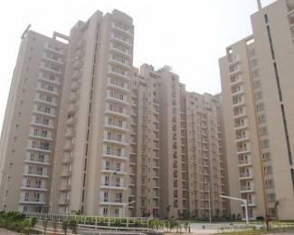 1135 sqft, 2 bhk Apartment in Shiv The Ozone Park Sector 86, Faridabad at Rs. 44.0000 Lacs