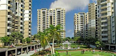 1450 sqft, 3 bhk Apartment in SRS Royal Hills Sector 87, Faridabad at Rs. 14000