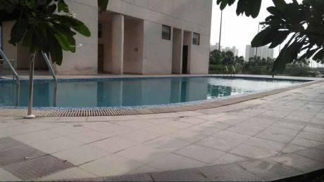 1557 sqft, 3 bhk Apartment in Piyush Heights Sector 89, Faridabad at Rs. 43.5000 Lacs