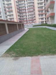 1343 sqft, 2 bhk Apartment in KLJ Greens Sector 77, Faridabad at Rs. 36.0000 Lacs