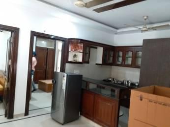 1500 sqft, 3 bhk BuilderFloor in Builder Project New Rajendra Nagar, Delhi at Rs. 60000