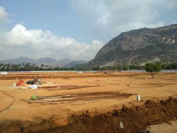 1800 sqft, Plot in Builder DOLLARS COLONY 6 Renigunta, Tirupati at Rs. 17.5000 Lacs