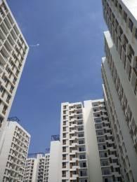 814 sqft, 2 bhk Apartment in TATA New Haven Nelamangala Town, Bangalore at Rs. 50.0000 Lacs