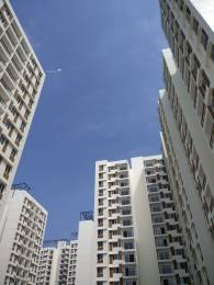 966 sqft, 2 bhk Apartment in TATA New Haven Nelamangala Town, Bangalore at Rs. 50.0000 Lacs