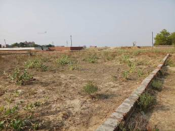 1251 sqft, Plot in Builder Project Jhusi, Allahabad at Rs. 25.0000 Lacs